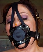 Roped, tightly gagged, hogtied, tits-clamped, teased
