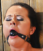 Mia bound spreadeagle, ball-gagged, vibed and teased
